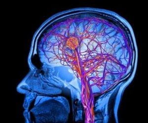 المخ لا يشيخ .. كبار السن لديهم قدرة علي إنتاج خلايا عصبية طوال الوقت
