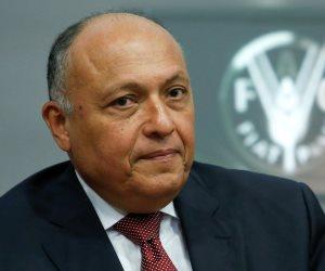 وزير الخارجية يبحث جهود مؤسسة مجدي يعقوب من أجل دعم الأفارقة (صور)