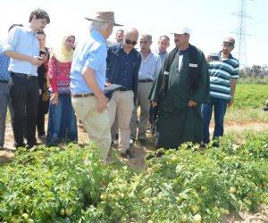 «عايزنها تبقى خضرة»... الوفد الزراعي للصندوق الدولي في كفر الشيخ (صور)