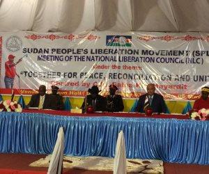 شكري: القاهرة تدعم حل أزمة جنوب السودان عبر المفاوضات.. وهذه رؤية مصر