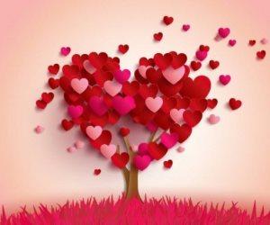 «العاطفة والعقل».. هل يجتمعان معًا في قصة حب ؟