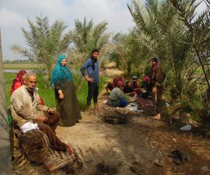 كيف تحول الفلاح المصري من فصيح إلى شقيان؟ (معايشة بالفيديو والصور)