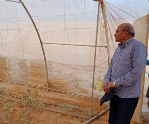 تفاصيل أزمة استصلاح 20 ألف فدان غرب غرب المنيا