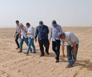 خلاف حول زراعة القطن للمرة الثالثة بمشروع استصلاح 20 ألف فدان غرب غرب المنيا