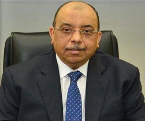 التنمية المحلية بدأت تدريب الشباب.. «شعراوي»: المجالس المحلية بداية من 2019