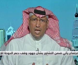 كيف يرى الأشقاء ثورة 30 يونيو؟.. خبير سعودي: مصر وقفت على قدميها بقيادة السيسي