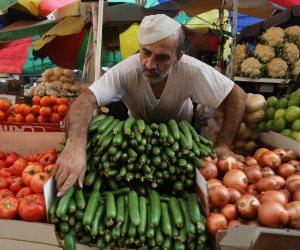 إجراءات للحد من المخالفات.. كيف تواجه الحكومة مافيا شتلات الخضر والفاكهة؟