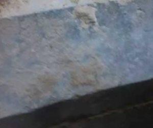 العثور على 3 مومياوات متحللة داخل تابوت الإسكندرية (صور)