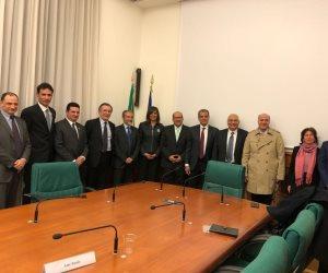 هل أنت مصري مقيم في روما؟.. تعرف على إجراءات معادلة رخصة القيادة المصرية بالإيطالية