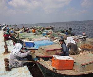 بشرة خير.. انطلاق موسم صيد الأسماك في بحيرة البردويل بشمال سيناء (صور)