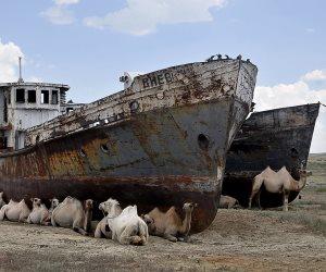 تحول إلى صحراء.. كيف تسبب عبث الإنسان بالطبيعة في اختفاء رابع أكبر بحار العالم؟