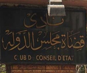 المستشار إبراهيم جلال رئيسا لنادي قضاة مجلس الدولة في أسيوط