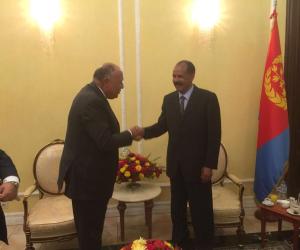 ماذا قال السيسي في رسالته الشفهية لرئيس إريتريا؟