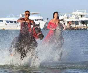 ركوب الخيول بالغردقة عشق الأوروبيين.. السائحون يفضلون ممارستها على الشواطئ الرملية (صور)