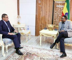وزير الخارجية الإثيوبي يلتقى «حفني» في أديس أبابا ويؤكد: العلاقات بين البلدين إيجابية