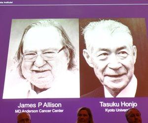 بعد 60 عامًا على الحرب.. جائزة نوبل تجمع أمريكا واليابان في مواجهة السرطان