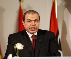 «سعفان» يكشف لـ صوت الأمة دور القوى العاملة في الحفاظ على وظائف المصريين بالخارج
