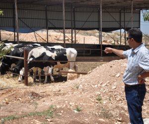 بعد الانتهاء من تكويد المحاجر البيطرية.. تعرف على خطة تطوير مجازر اللحوم والوحدات الطبية