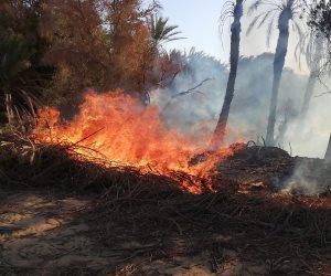 الحرائق تلتهم الأراضي الزراعية في العراق.. والفاعل مجهول