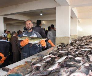 أسعار السمك اليوم السبت في سوق العبور