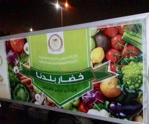 """قوطة وبطاطس رخيصة.. أسعار الخضراوات والفاكهة بمنافذ """"التموين"""" في متناول الجميع"""