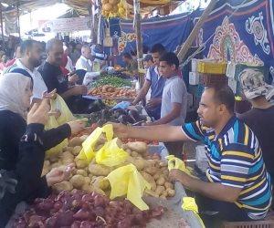 قرارات جديدة تتعلق بالتنمية والانضباط الوظيفي والشهداء في سيناء (صور)