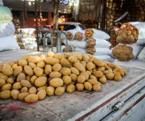 الخضار هو السبب.. أسعار البطاطس والفلفل والبصل تقود التضخم الشهري إلى الارتفاع