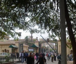 بعد القصر العيني.. رئيس جامعة القاهرة لـ«صوت الأمة»: تطوير أبو الريش للأطفال حتمي