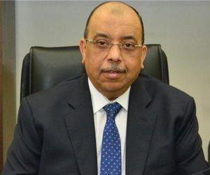 وزير التنمية المحلية يكشف أعداد الموظفين المشاركين في استفتاء الدستور