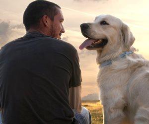 """قصة منتصف الليل.. محكوم عليه بالإعدام في عيون المجتمع بسبب والده يروي مأساته لـ"""" الكلب"""""""
