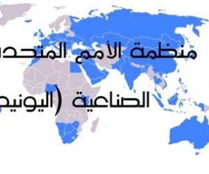 بعد انضمام مصر لـ «اليونيدو».. كل ما تريد أن تعرفه عن المنظمة التابعة للأمم المتحدة