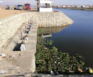 «الحزام الآمن» ضربة البداية.. مشروع تطهير بحيرة قارون يعيد الأمل لآلاف الصيادين