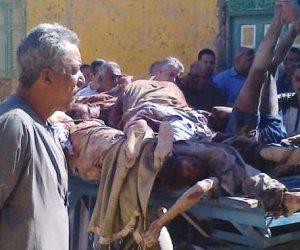 قاعدة قانونية أنقذت متهمين من قبضة عشماوي: لا يضار طاعن بطعنه