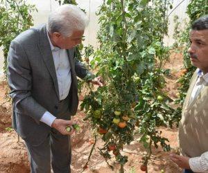 احتفالاً بأعياد سيناء.. «فودة» يفتتح مزرعة انتاج نباتي وسمكي (صور)