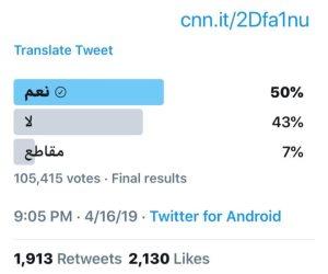 «نعم» للتعديلات الدستورية تنتصر على أكاذيب CNN وحشود «الإخوان الإرهابية»