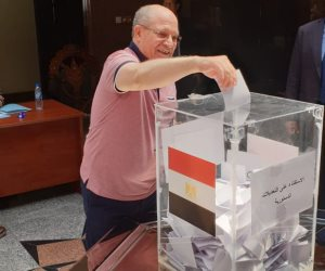 دليل على نزاهة الاستفتاء.. المصريون لـ«دويتشه فيله»: نعم للتعديلات الدستورية (صور)