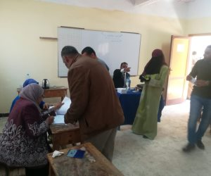 المواطنون يتسابقون على لجان الصف للمشاركة في الاستفتاء (صور)