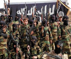 الأجندة المصرية حول عودة المقاتلين الإرهابيين الأجانب أمام الأمم المتحدة.. ماذا تحمل؟