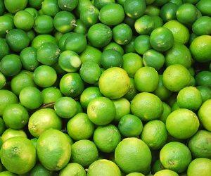"""على عهدة """"البحوث الزراعية"""": الليمون بـ10 جنيهات بداية من يوليو"""