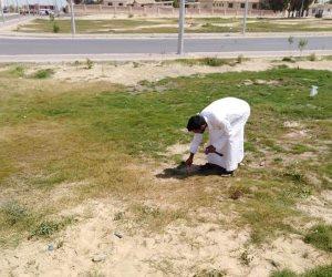 مدينة بئر العبد تتجمل.. حملات نظافة ورفع كفاءة المتنزهات والحدائق لاستقبال فصل الصيف (صور)