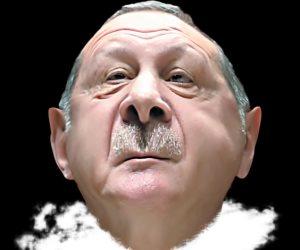 تركى بجم.. المصريون يلقنون ديكتاتور تركيا درسا في التعامل مع مصر