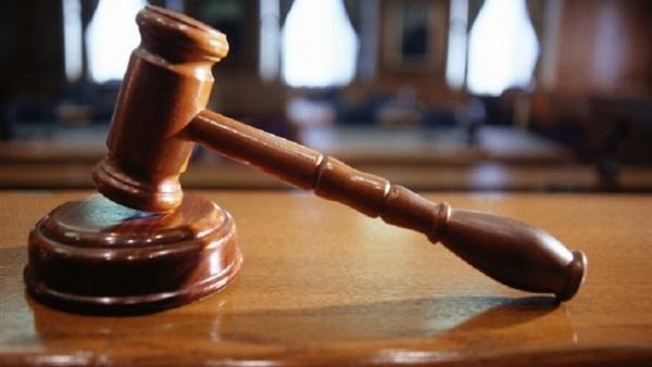 تأجيل محاكمة «الصباغ» بتهمة النصب على المواطنين لـ18 فبراير