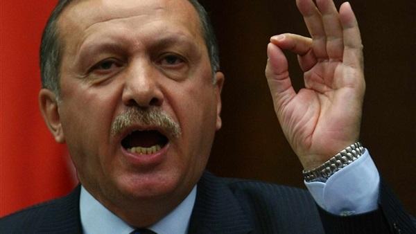 برلماني نمساوي: أردوغان يمتلك نظام تجسس لمراقبة معارضيه