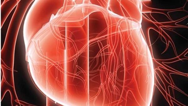 زرع الخلايا الجذعية قد يوقف تطور مرض التصلب المتعدد