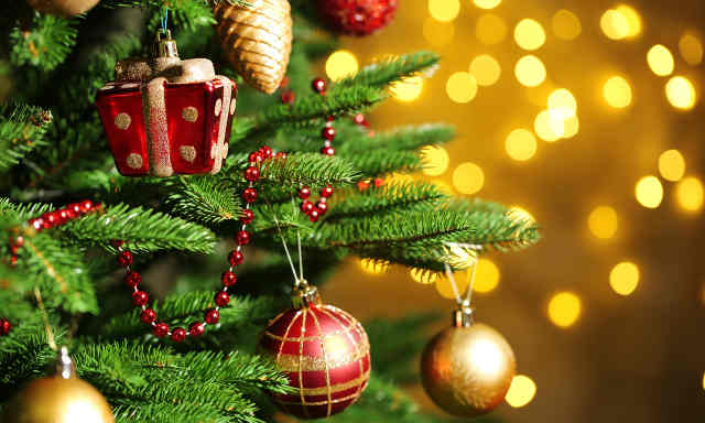 نتيجة بحث الصور عن شجرة الكريسماس