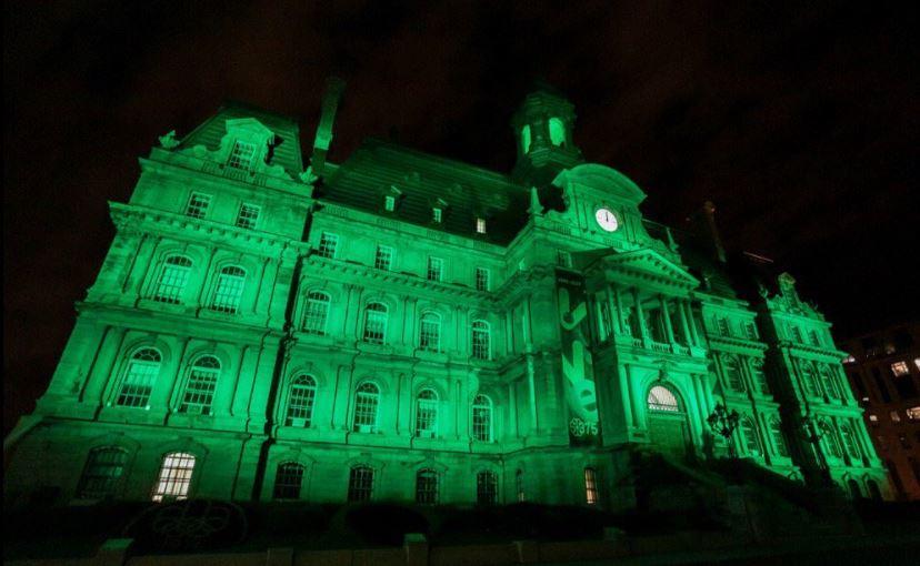 العالم يتضامن باللون الأخضر