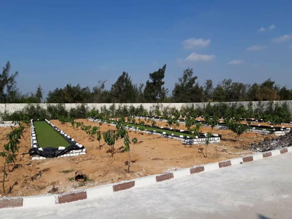مزرعة ابراهيم الجارحي