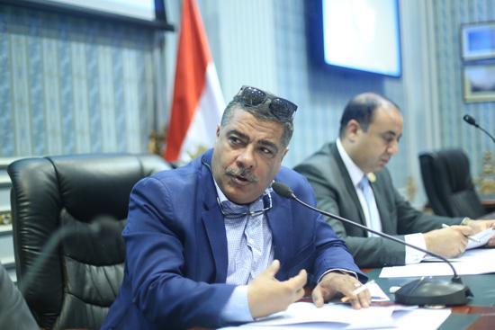 النائب معتز محمد محمود