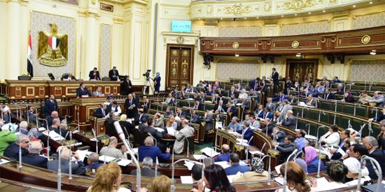 الجلسة العامة لمجلس النواب copy