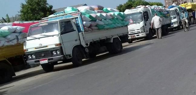 سيارات تحمل القمح تنتظر عن التوريد لأيام
